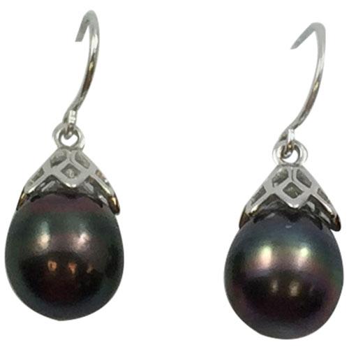 Sterling Silver Black Tahitan Pearl Earrings